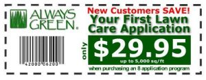 Always Green Lawn Care discount coupon for new customers from the Tampa Bay Area